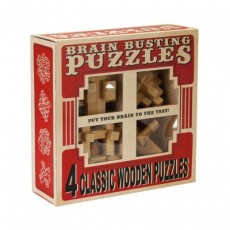 Wooden Brain Busting Puzzles - Professor Puzzle